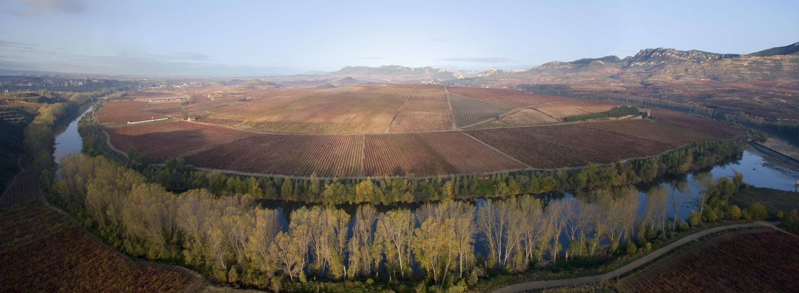 Las últimas puntuaciones de Parker en Rioja