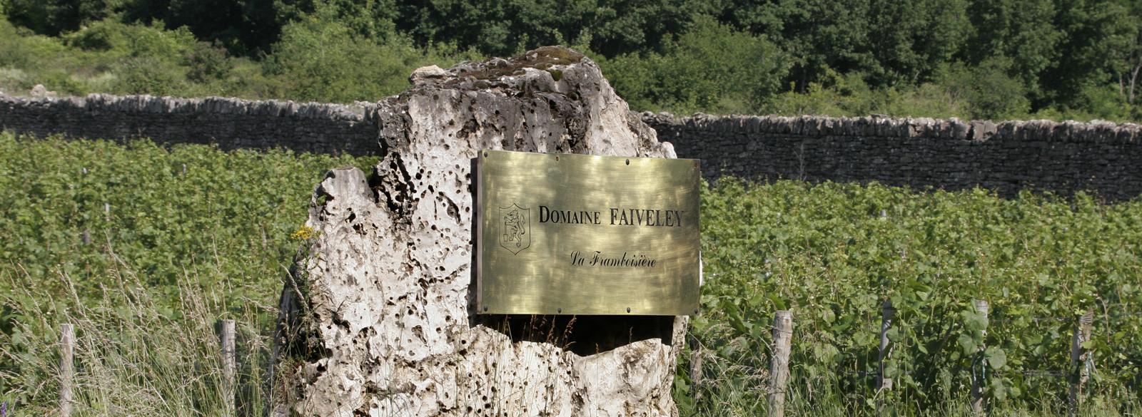 Leer la etiqueta de un Borgoña