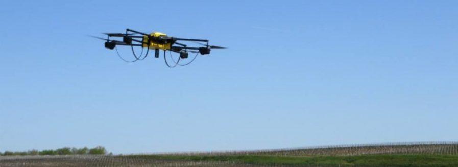 Los drones de Bernard Magrez