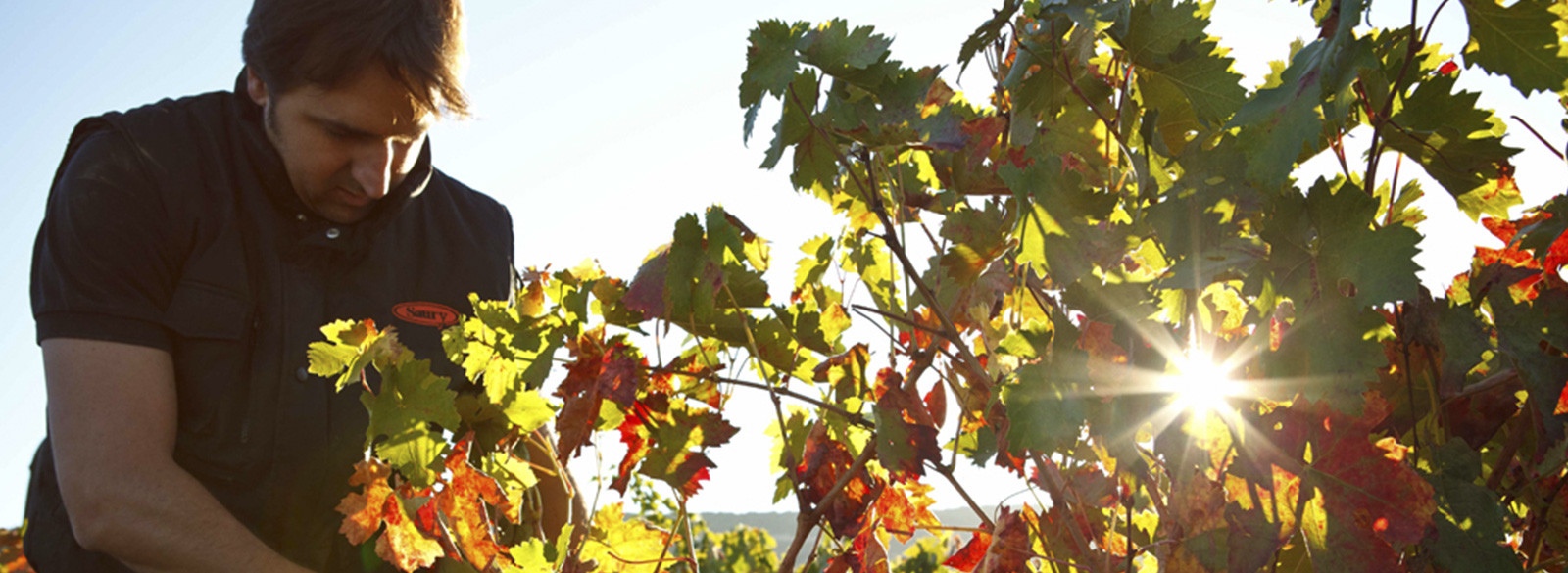 Tom Puyaubert: Aire fresco y rock'n'roll en Rioja