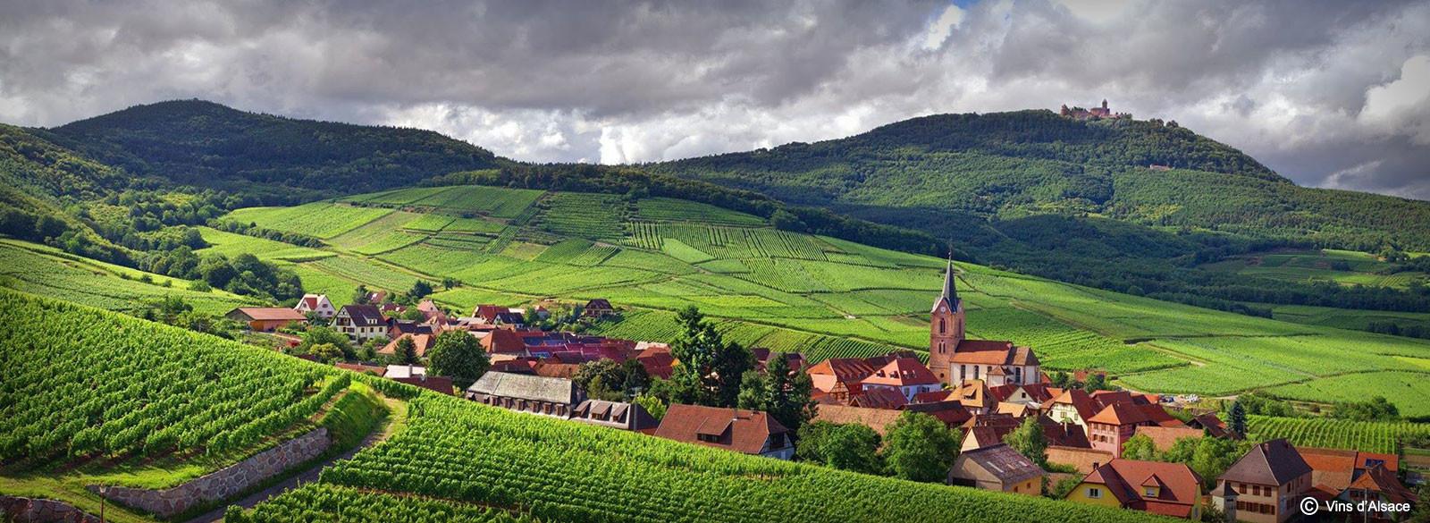 Alsacia: un paraíso de blancos por descubrir