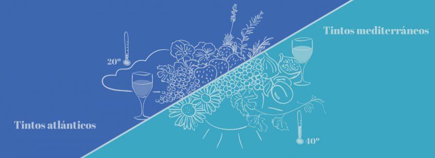 Dos estilos de tintos: atlánticos y mediterráneos
