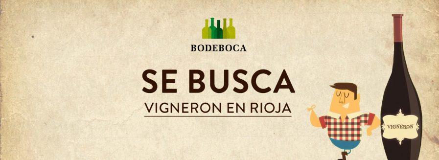 Buscamos vinos de pequeños productores en Rioja