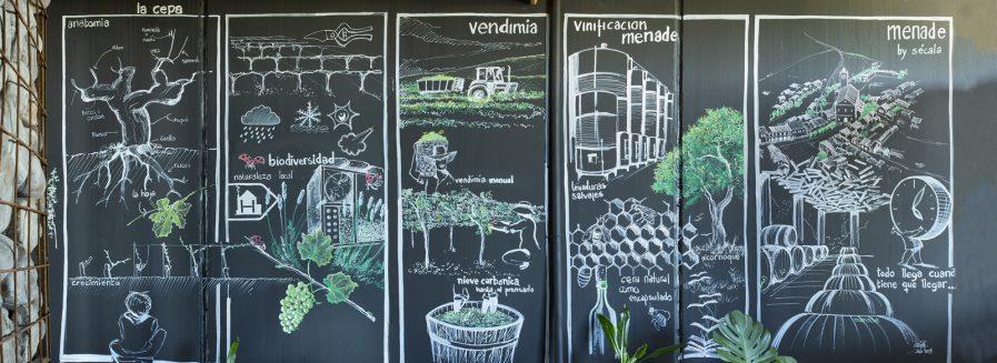 Un hotel de insectos: fomentando la vida en el viñedo