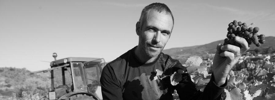 Entrevista a Raúl Acha, director técnico de Vintae