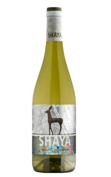 Shaya 2015