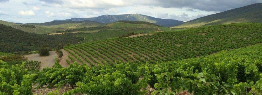 Languedoc-Roussillon, el secreto mejor guardado de Francia
