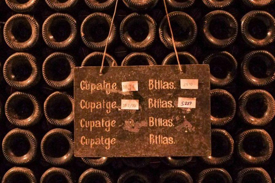 Cataluña para winelovers