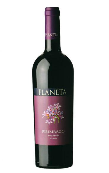 Planeta Plumbago 2015