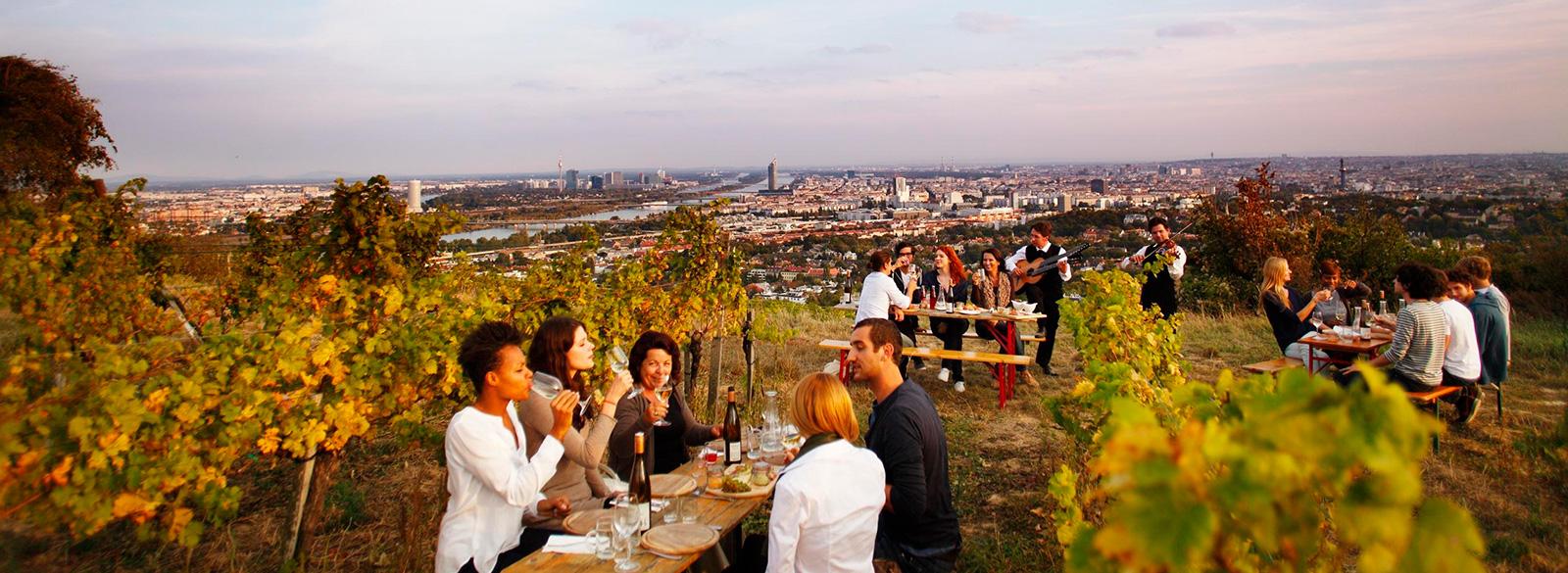 Pistas para descubrir el vino austriaco
