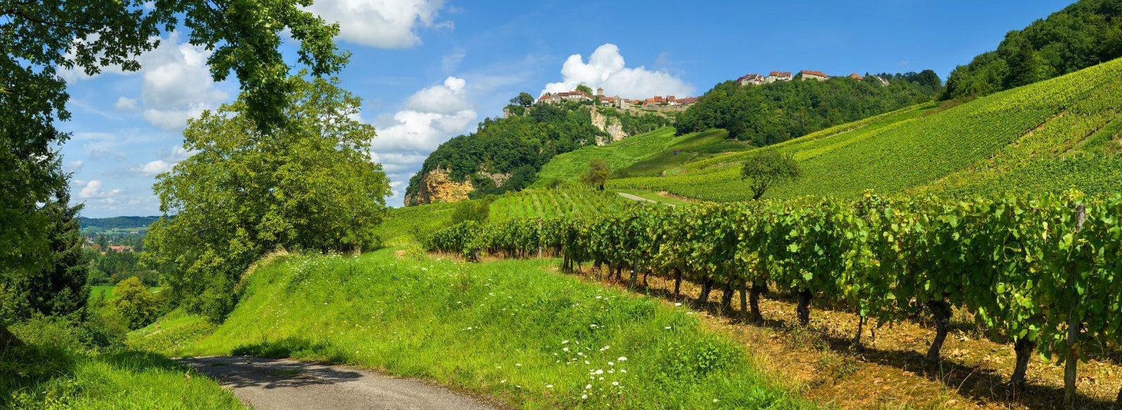 Guía rápida para introducirse en los vinos de Jura