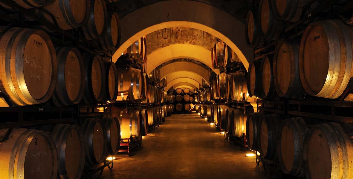 Comprar los vinos de bodegas luz n directamente de la - Bodegas de vino en valencia ...