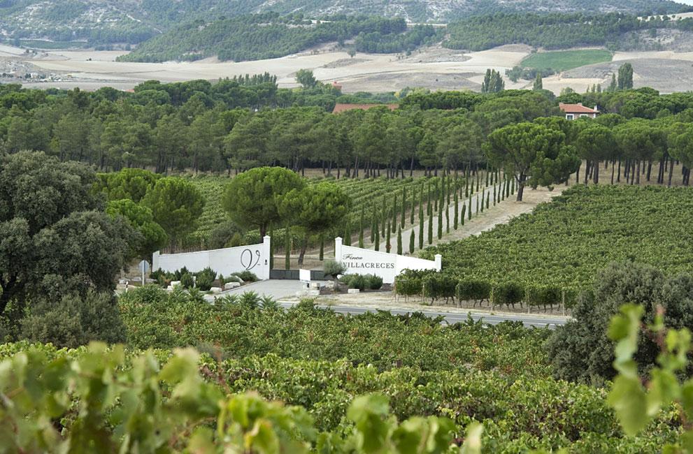 Resultado de imagen de viñedos de la finca villacreces