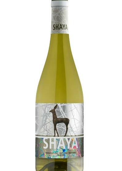 Shaya 2017