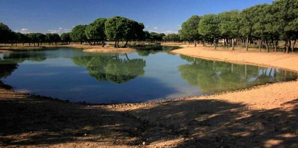 Lago situado en las inmediaciones
