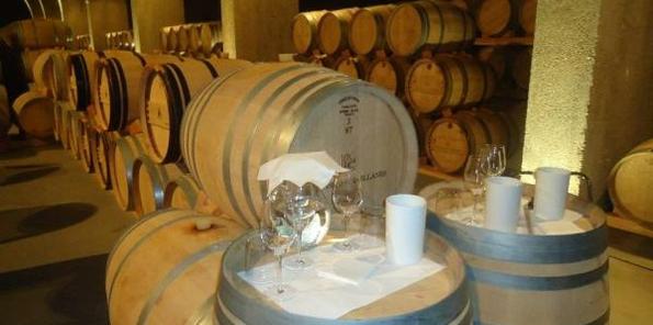 Muestra de los vinos