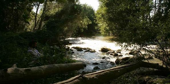 Río Duero debajo del viñedo