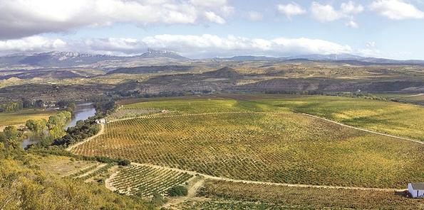 Vista aérea de las 72 hectáreas de Viña Lanciano