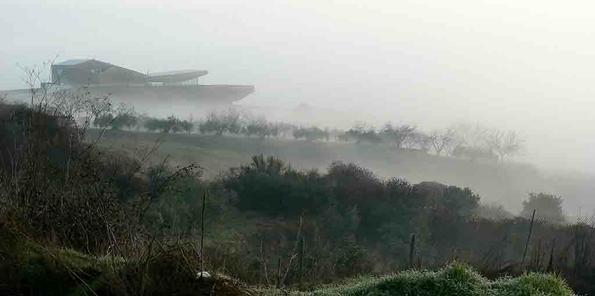 Niebla en el valle