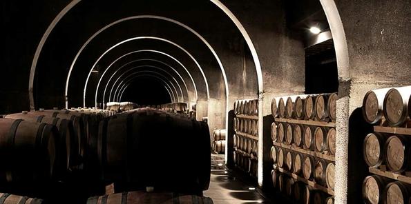 """Los vinos de Capellanes """"durmiendo"""" en barrica"""