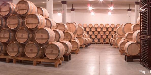 Crianza de los vinos en barrica nueva