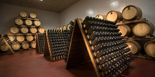 Sala de barricas con botellas en rima