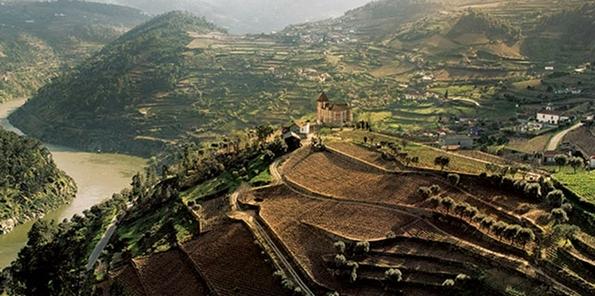 Viñedos en Douro