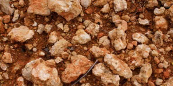 Detalle del suelo del viñedo Jané Ventura