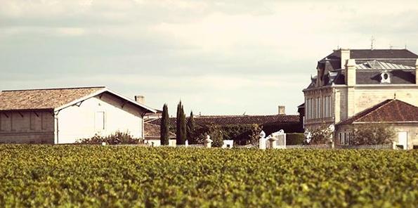 Edificio de la bodega y viñedos