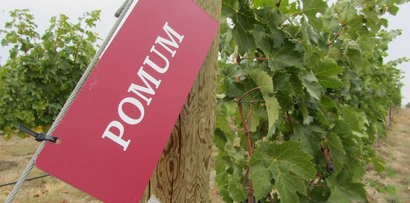 Pomum Cellars