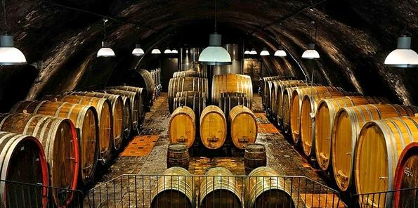 Grandes tinos de fermentación y crianza