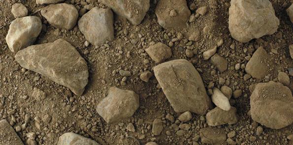Detalle de los suelos de la finca La Garriga