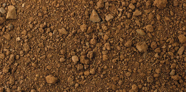 Detalle de los suelos arcillosos de la finca Malaveïna