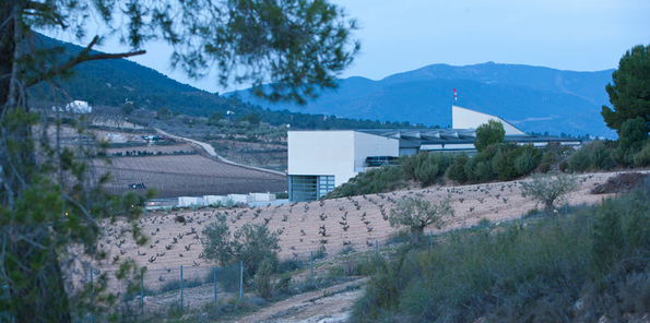 Vista de parte del viñedo y del singular edificio de Sierra Salinas