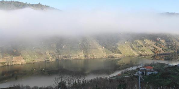El cañón del río con niebla