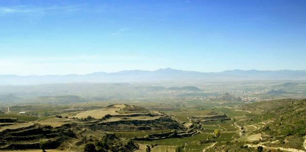 Panorámica de viñedos en Sonsierra