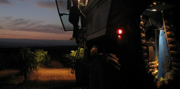Tractor para la vendimia nocturna