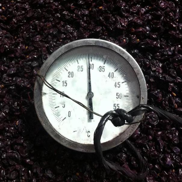Control de la temperatura en la fermentación