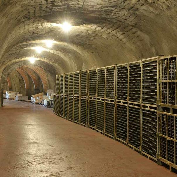 Túnel de 200 metros donde se ubica el botellero