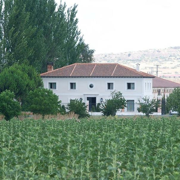 Casa de bodega