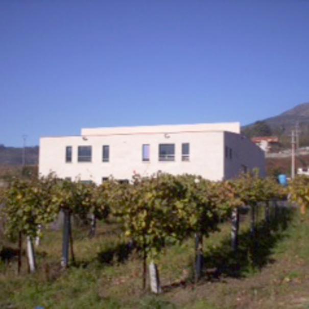 Imagen de la propiedad y los viñedos.