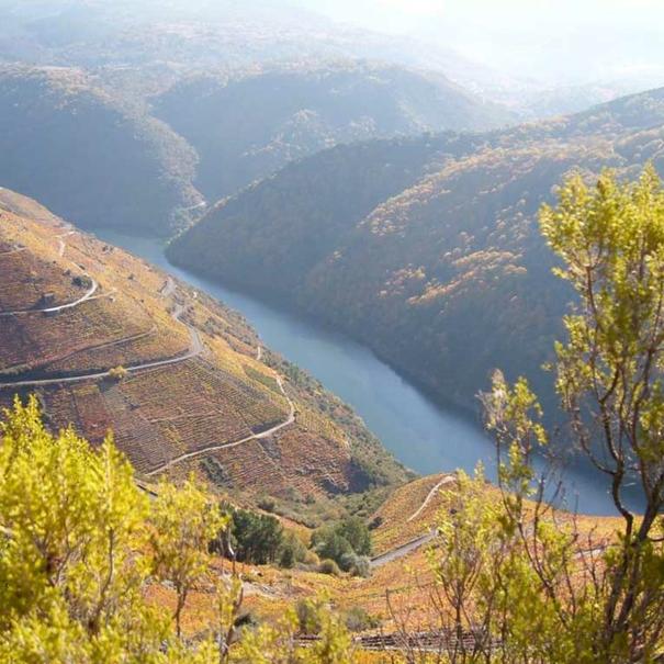 El entorno de la Ribeira Sacra con el río Sil al fondo