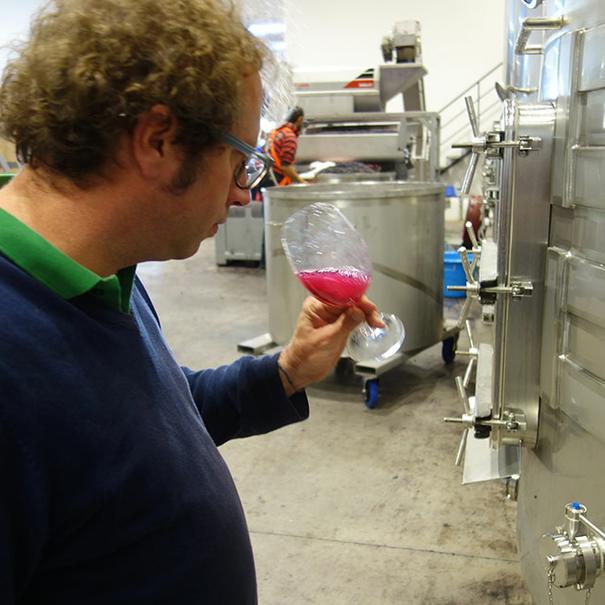 Bertrand catando el vino en depósito