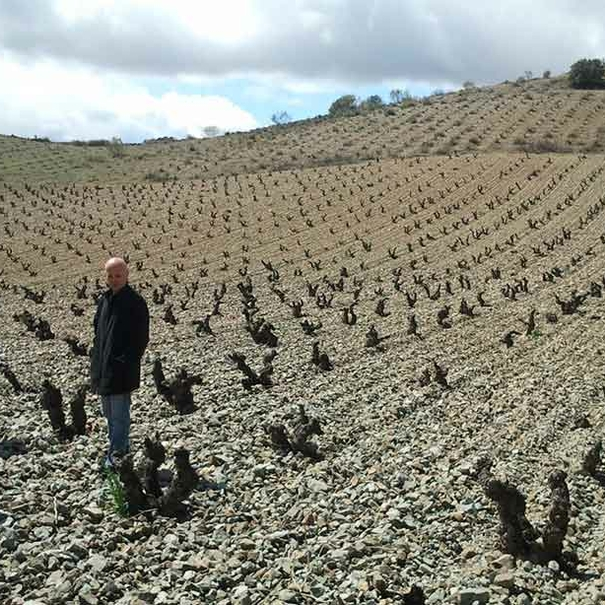 Viñas viejas de Garnacha aragonesa