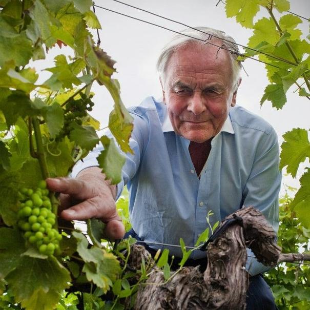 Magrez en sus viñedos