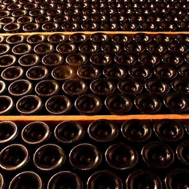 Botellas descansando en botelleros