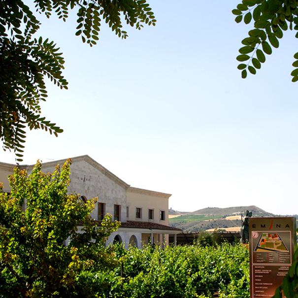 Vista del edificio de Emina Ribera