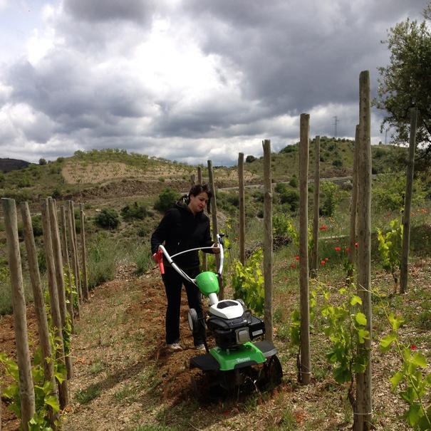 Meritxell trabajando en el viñedo