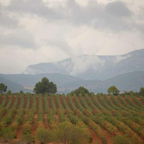 Altiplano valenciano