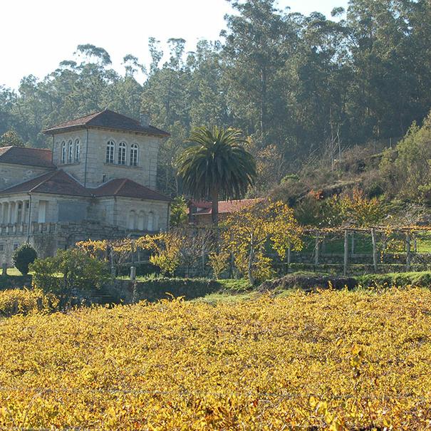 Vista del pazo y del viñedo